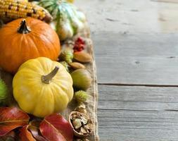 Herbsthintergrund mit Kürbissen foto