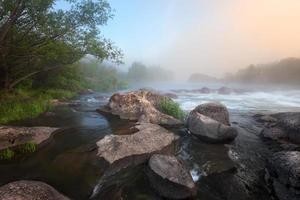 nebliger Flussmorgen