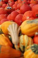 Halloween-Kürbis mit großer Gruppe von Kürbissen foto