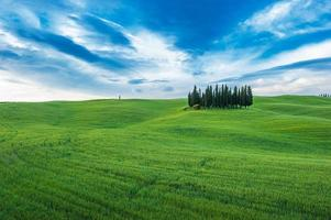typische toskanische Landschaft foto