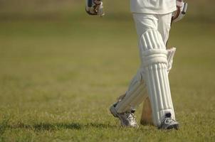 Englisch Cricket foto