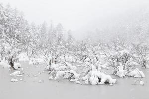 gefrorener See foto
