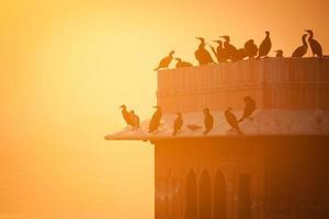 Morgendämmerung im Jaipur Jalmahal Palast, Rajasthan, Indien foto