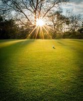 Golfball auf Grün foto