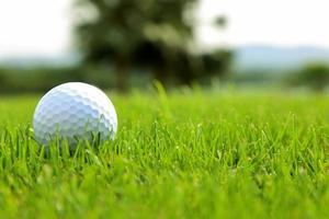 Golfball auf grünem Gras. foto