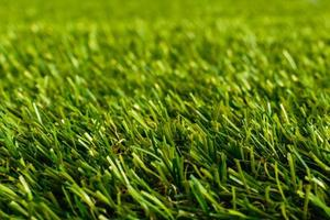 Nahaufnahme von Golf grünem Gras foto
