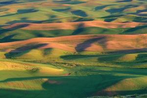 Bauernfelder