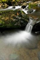 fließender Wasserfall