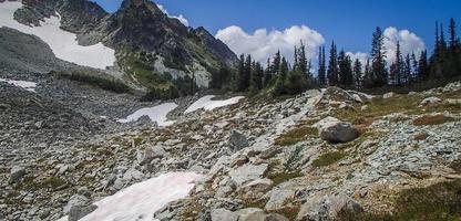 Gletscher zwischen Felsbrocken, Kiefern und Schnee
