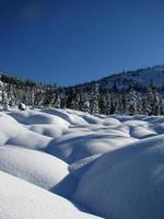 schneebedeckt foto