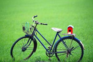 buntes Vogelhaus auf altem Fahrrad. foto