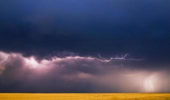 stürmischer Himmel über einem Weizenfeil