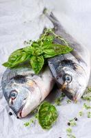 Dorado Fisch mit Zitrone foto