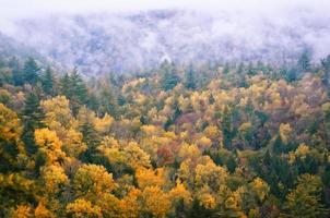 Herbstmonolog foto