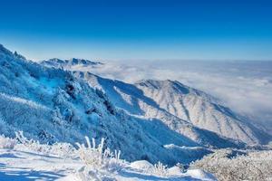 Das Seoraksan-Gebirge ist im Winter in Korea von Morgennebel bedeckt.