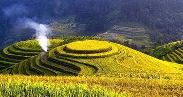 terrassierte Reisfelder foto