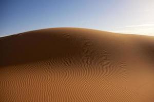 Düne in der Wüste foto