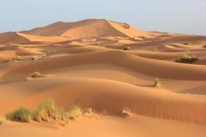 Sand der Sahara foto