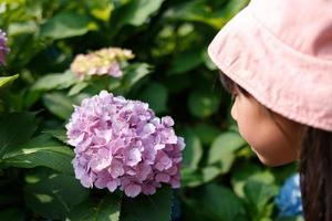 Kind, das Hortensien beobachtet foto