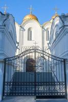Annahme Kathedrale, schoss Wladimir Nahaufnahme