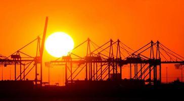Kräne bei Sonnenuntergang foto