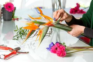 weibliche Hände, die Blumenstrauß arrangieren. foto
