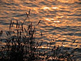 Silhouetten bei Sonnenuntergang