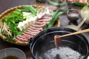 Wild Stockente Ente Hot Pot, japanische Eintopf Gericht foto