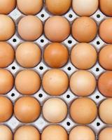 Eier in der Packung foto