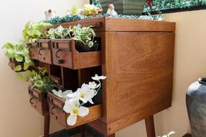 Pflanze in Schreibtischschublade foto