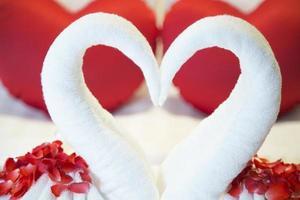 Schwanenpaar schöne romantische Hotelsuite foto