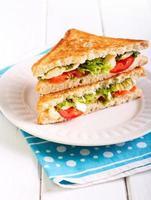 Sandwich mit Mozzarella und Tomaten vom Grill foto