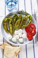 gesunder leichter Salat mit gerösteten Paprika, Mozzarella und Tomaten