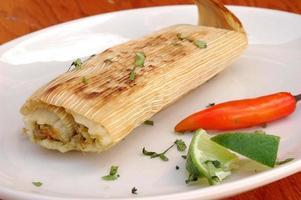 Rindfleisch Tamale foto