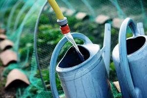 Gartenarbeit, Gießkanne mit Wasser füllen, um die Pflanzen zu gießen