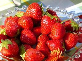 Hausmannskost. Erdbeere foto