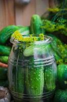 Glas Essiggurken andere Zutaten Beizen foto