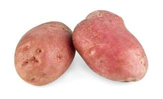 Kartoffel foto