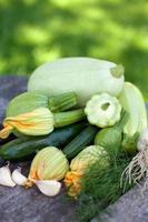 Sammlung von Zucchini und Markgemüse