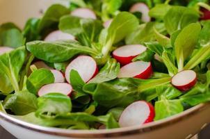 Salat und Radieschen foto