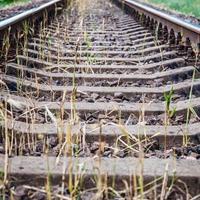 Eisenbahnschienen foto