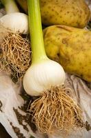 Knoblauch und Kartoffeln foto