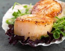 gebratene Jakobsmuscheln auf Salat foto