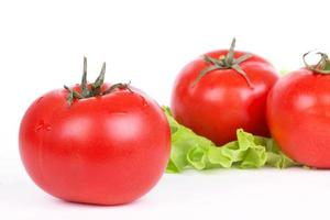 Tomaten und grünes Salatblatt foto