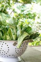 Grünkohlgemüse (chinesischer Brokkoli) foto
