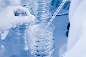 wissenschaftlicher Testhintergrund
