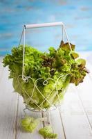 verschiedene Salatsorten foto