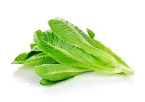 frischer cos Salat auf einem weißen Hintergrund foto