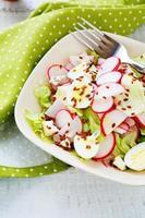 Salat aus Radieschen, Blauschimmelkäse, Samen und Salat foto