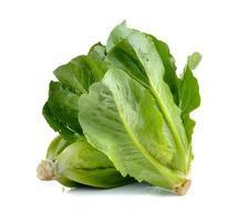 cos Salat auf weißem Hintergrund foto